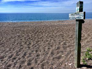 Lake Superior beach and Superior Hiking Trail sign near Camp 20 Road.