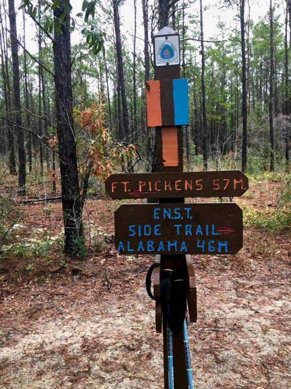 Florida National Scenic Trail 39