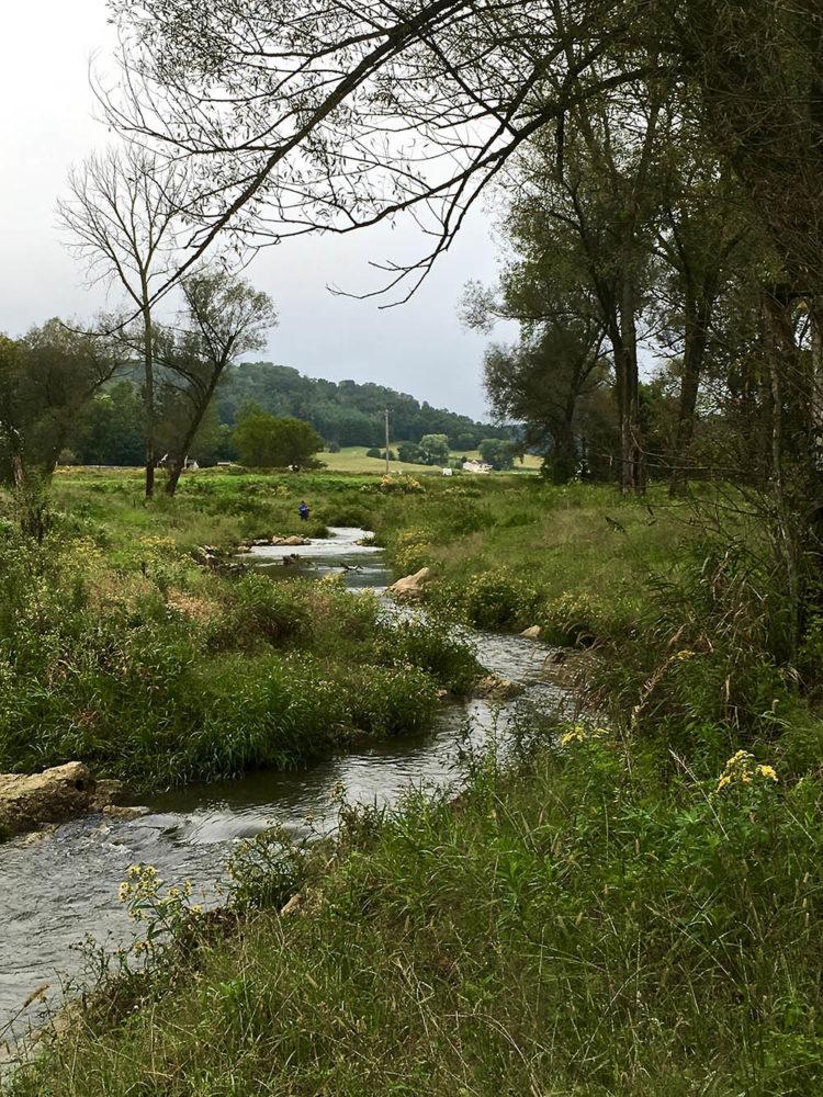 Creek winding through open, grassy area on cloudy day near Kickapoo Valley Ranch.