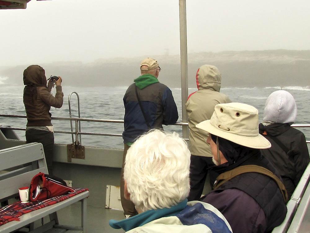 Machias-Seal-Island-Boat