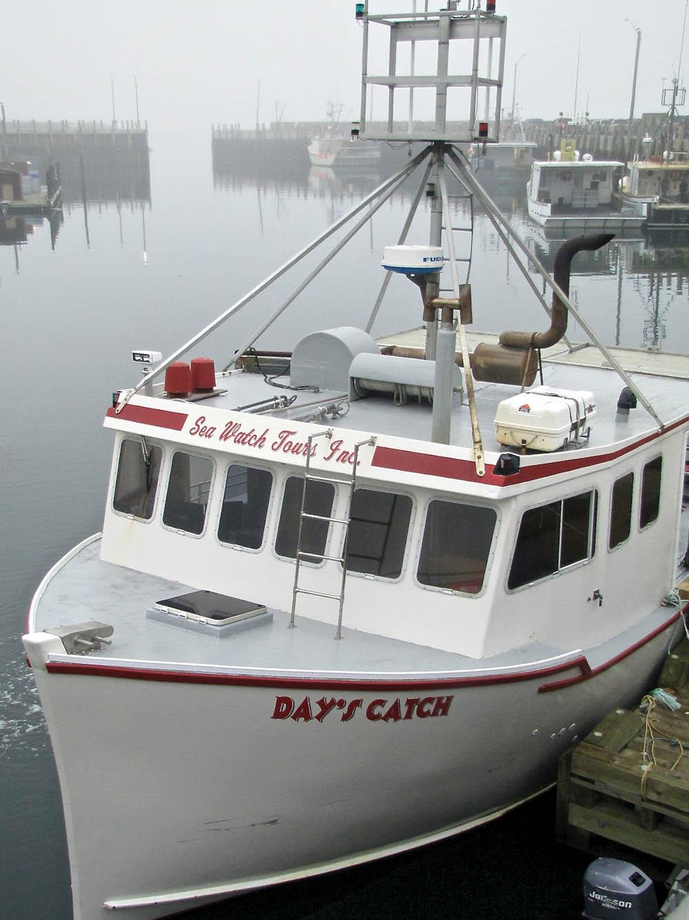 Machias-Seal-Island-Boats