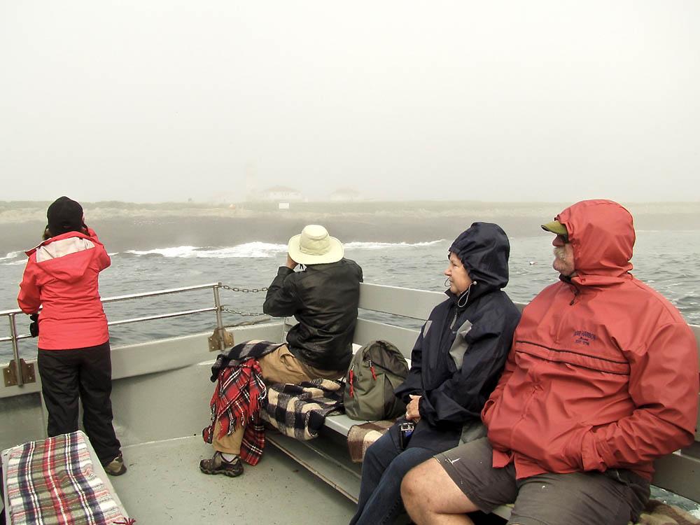 Machias-Seal-Island-Viewing