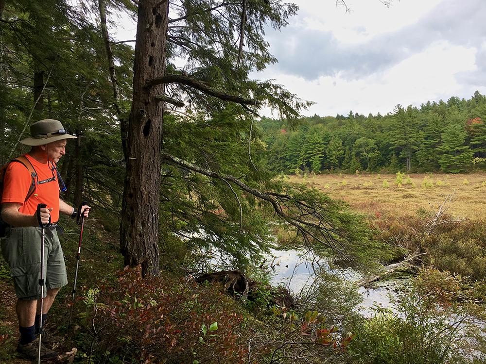 St-Grace-StateForest-Adventure