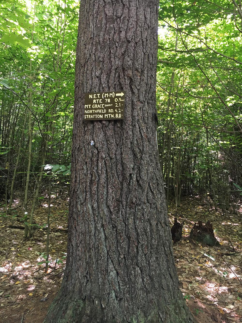 St-Grace-StateForest-signage