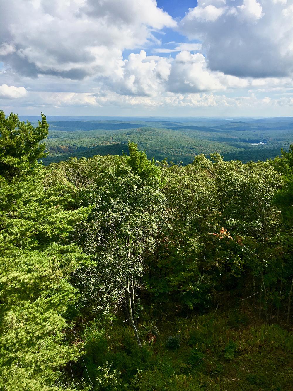 St-Grace-StateForest-views