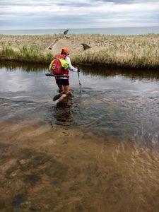 Woman hiking through water toward a sandy point near Muskellonge Lake.
