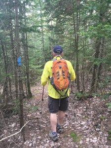 Hiker walking through the woods on the NCT near Grand Marais.