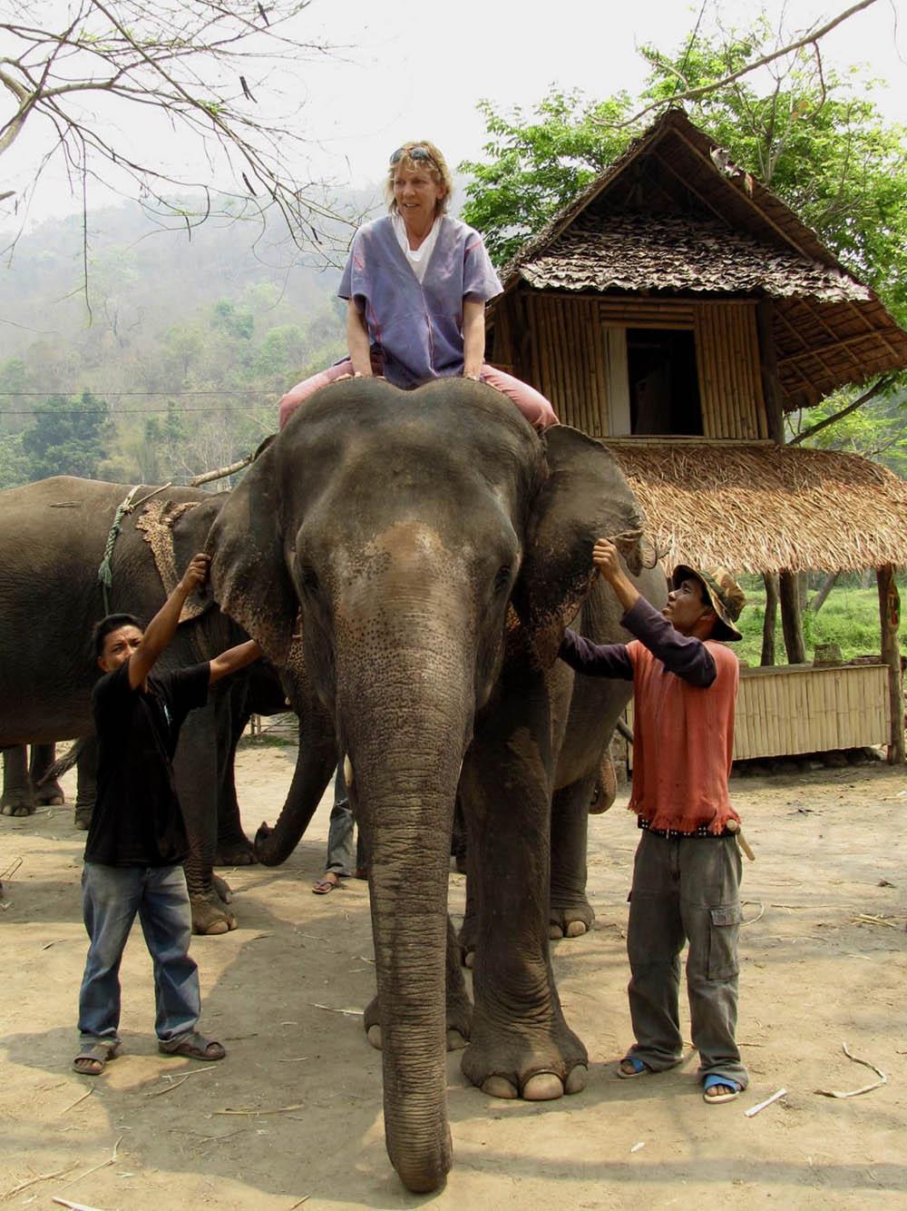 elephant-farm-rides
