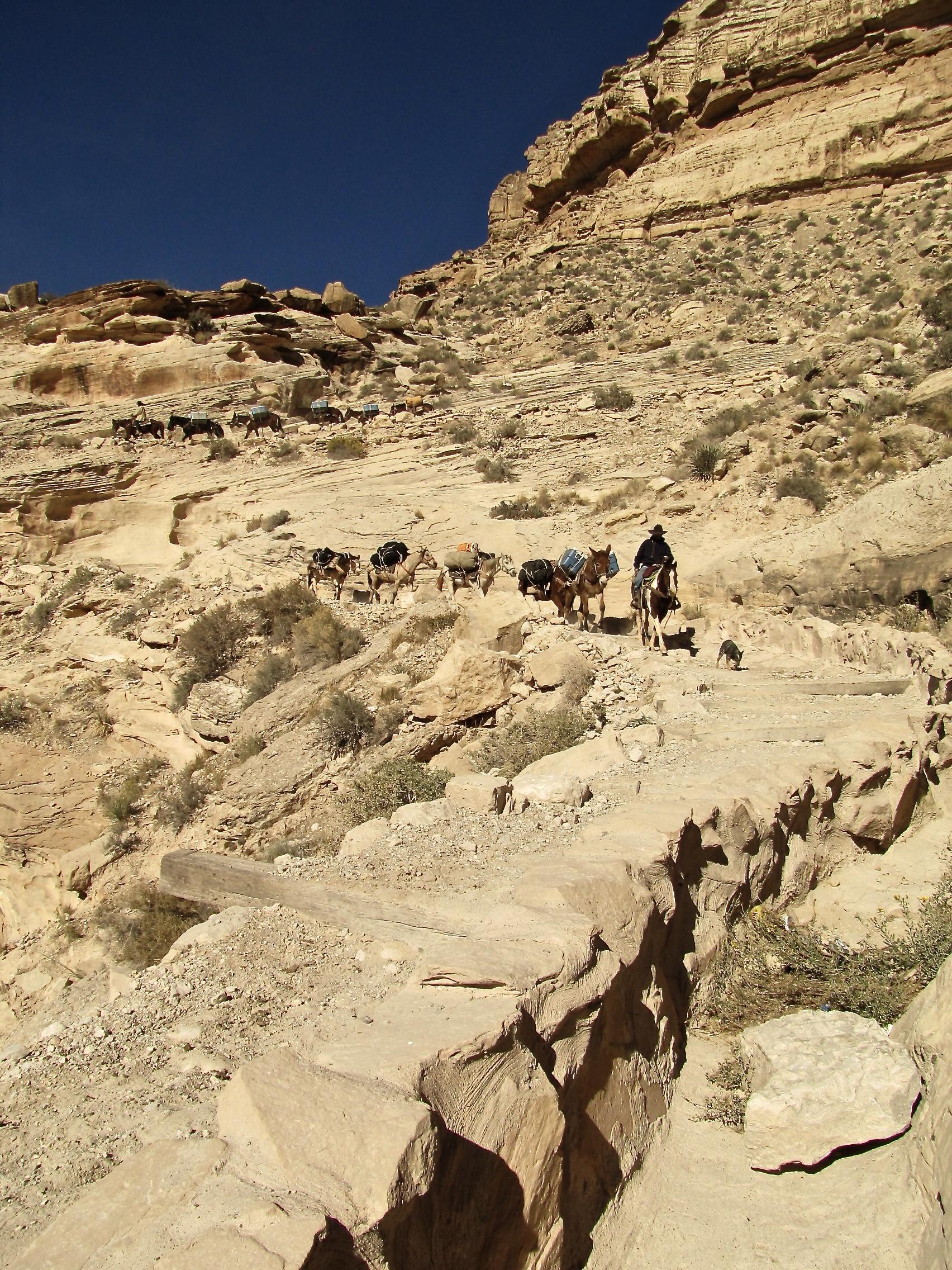 Grand Canyon Havasu 5