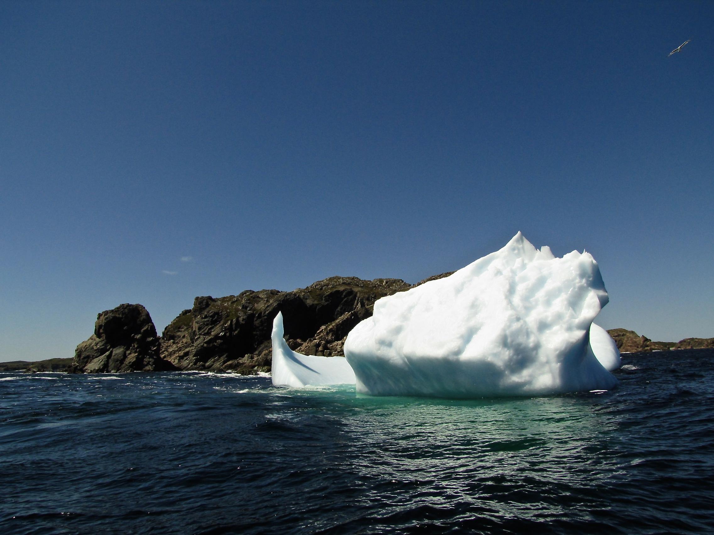 Iceberg Alley 13