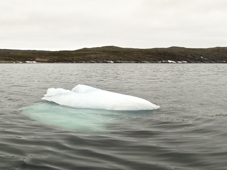 Iceberg Alley 8