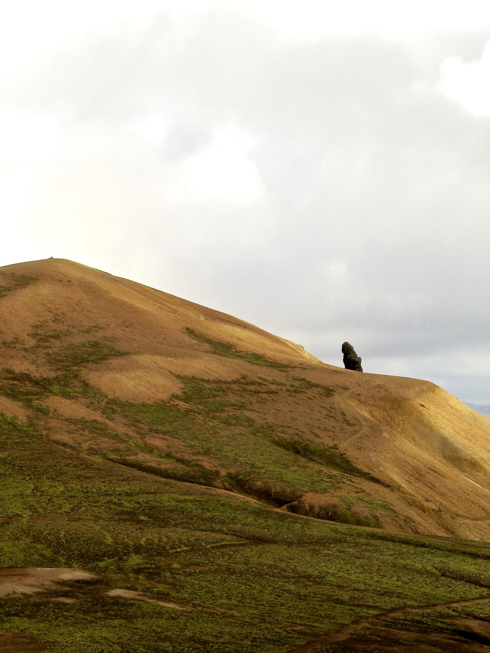 Laugavegur Trail (Iceland) 20