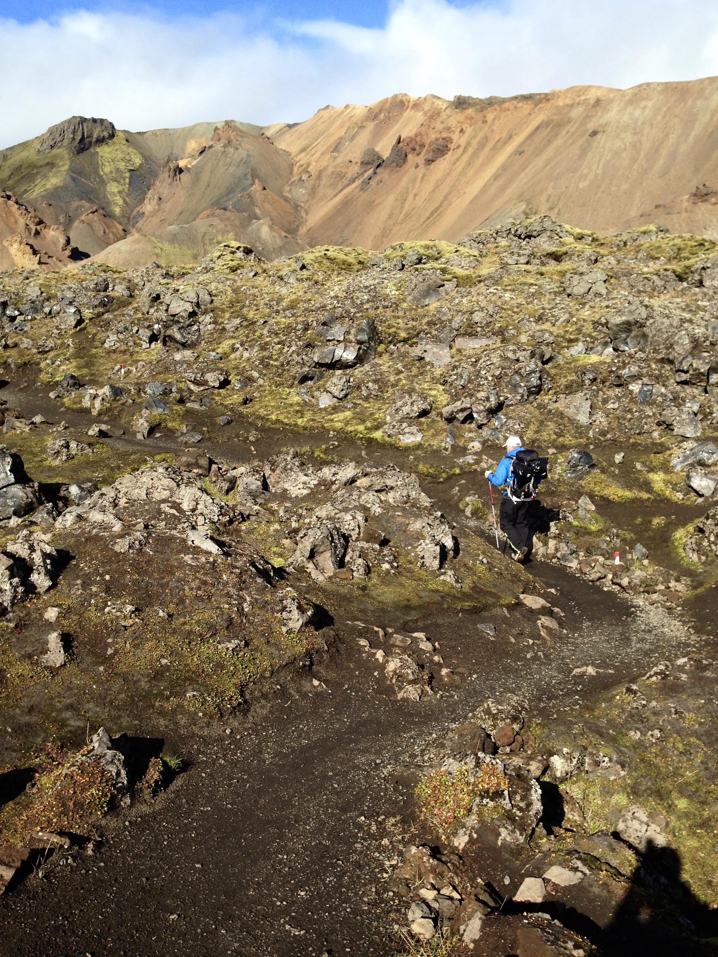 Laugavegur Trail (Iceland) 37