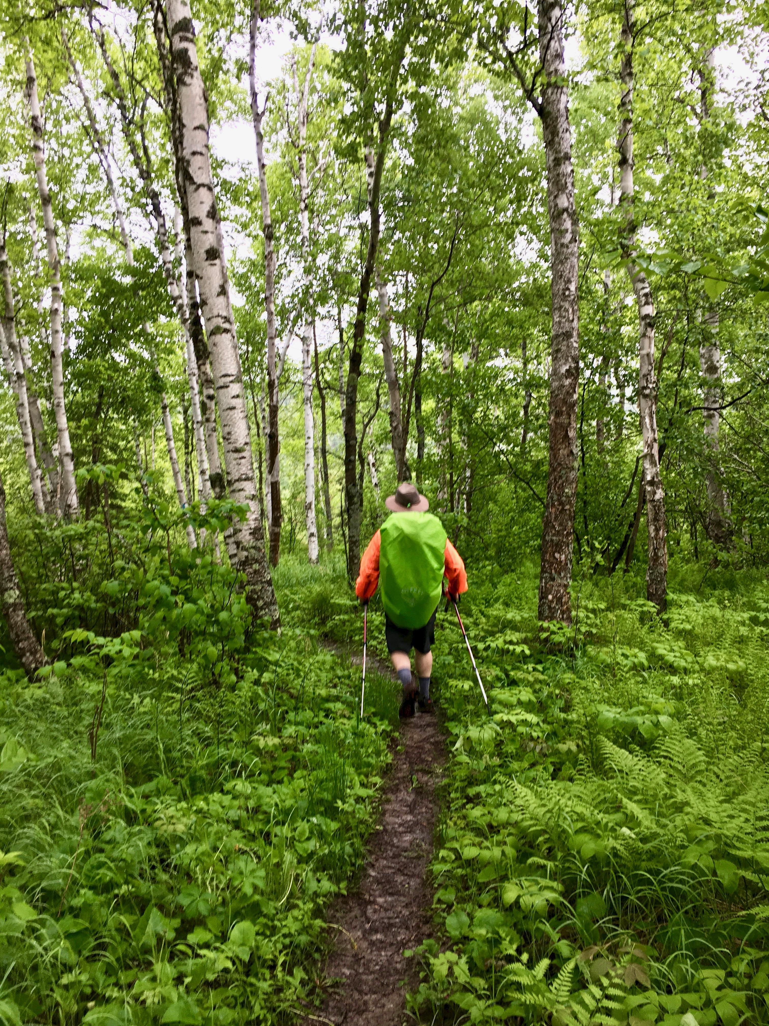 Superior Hiking Trail 1