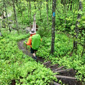 Superior Hiking Trail 2