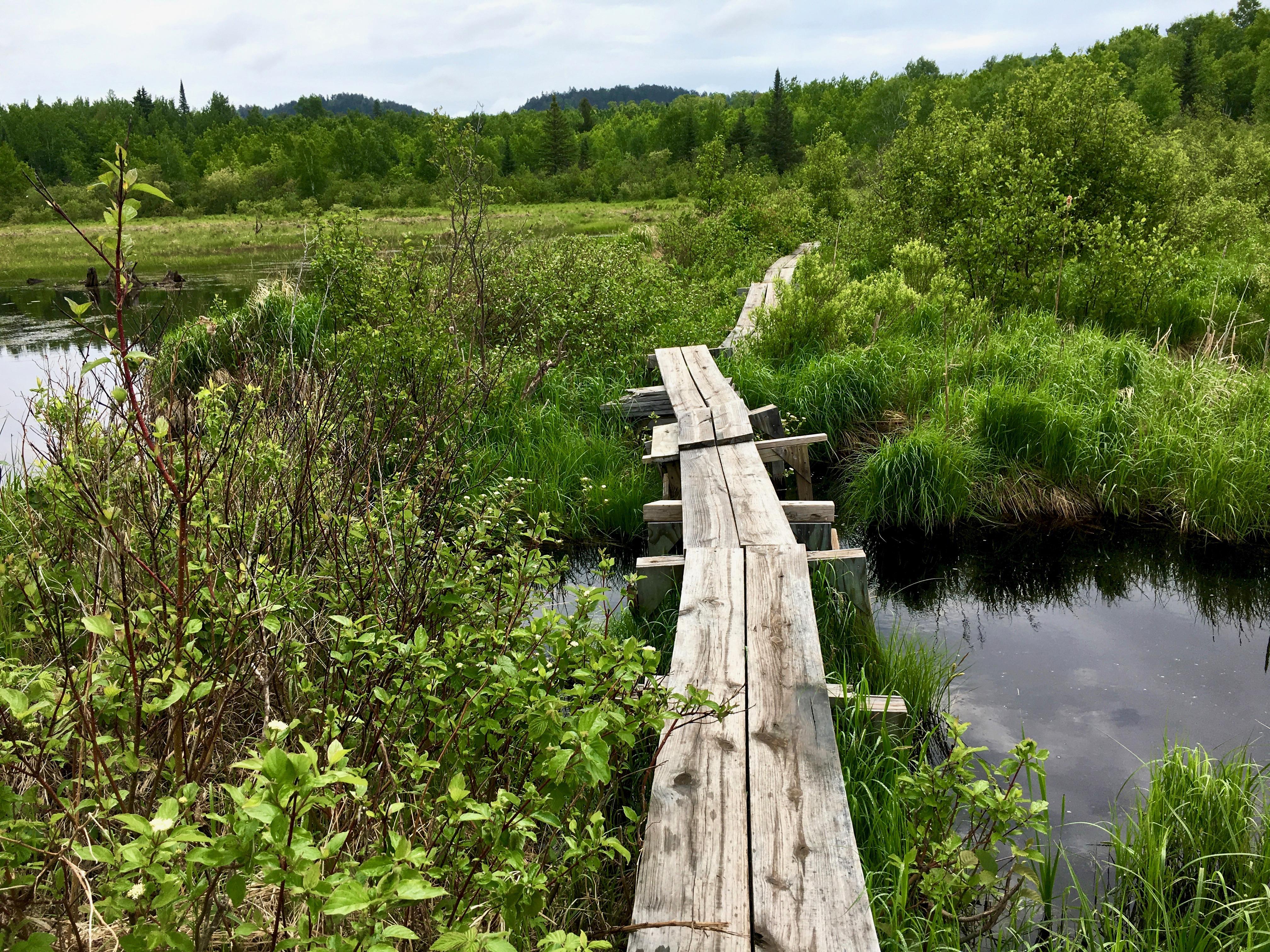 Superior Hiking Trail 25