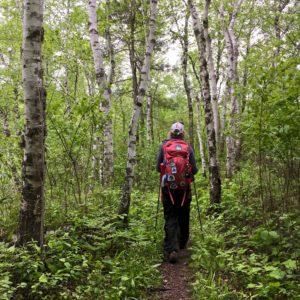Superior Hiking Trail 4