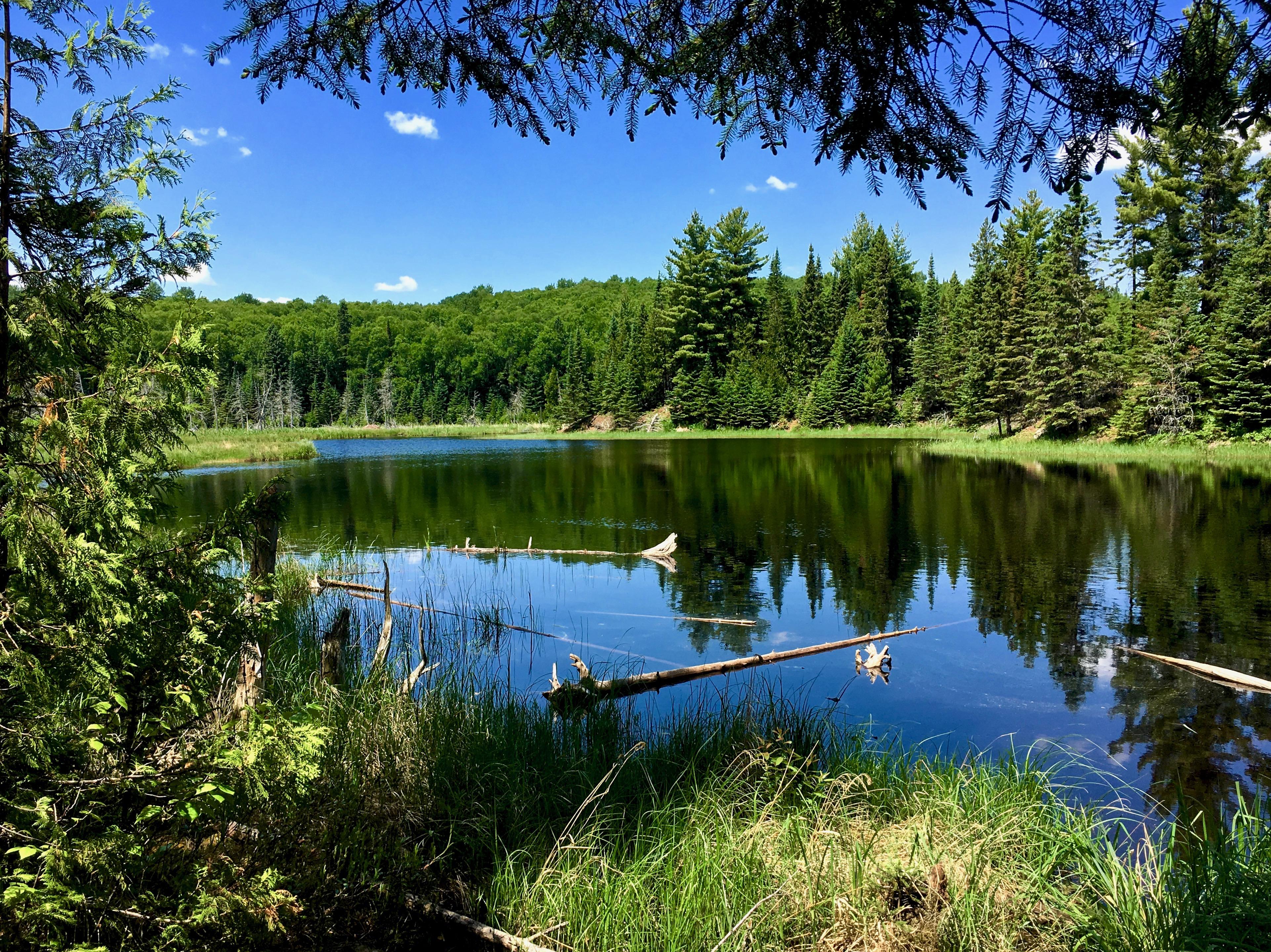 Superior Hiking Trail 41