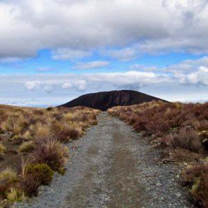 Tongario Crossing 1