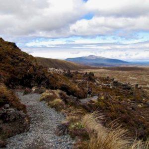 Tongario Crossing 4