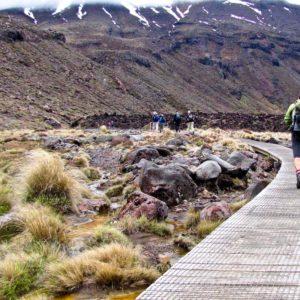 Tongario Crossing 6