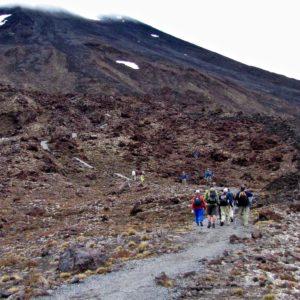 Tongario Crossing 7