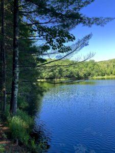 View of Erick Lake on North Country Trail near Lake Ruth trailhead.