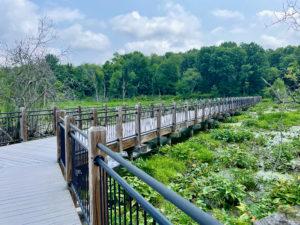 Boardwalk bridge over a wetlands area under a cloudy sky.