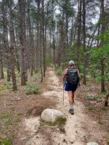 Female hiker on sandy path through pines.