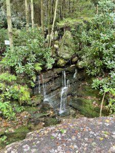 Small waterfall alongside a hiking trail.