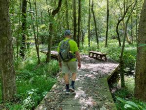 Man walking along boardwalk in the forest.