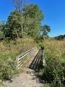 Wooden bridge leading over marshland near Occoquan.